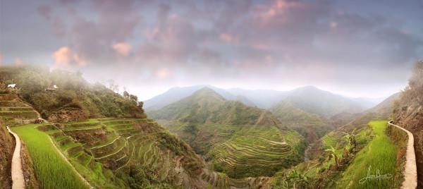 panoramarice terraces
